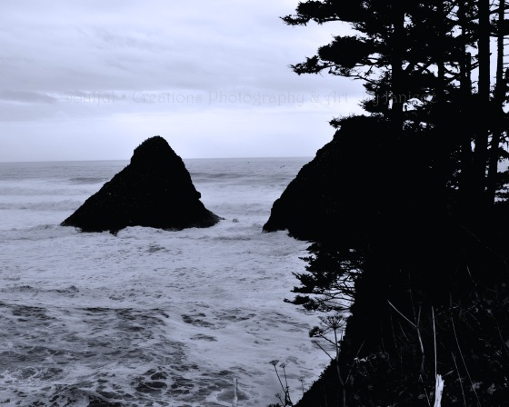 Pacific Ocean View Heceta State Beach Large Rock Scienic Oregon Coast Black and White with Blue Tones FIne Art Photography Wall Art
